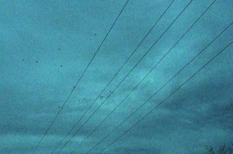 Telephone_Lines
